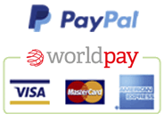 website payment methods